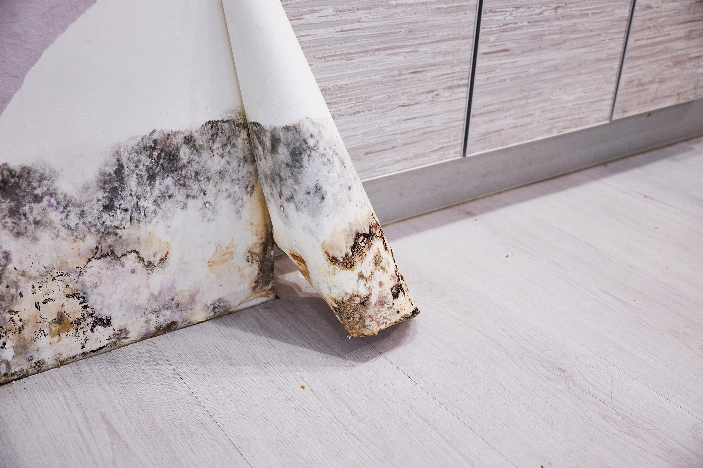 Dezinfekcia a čistenie povrchov